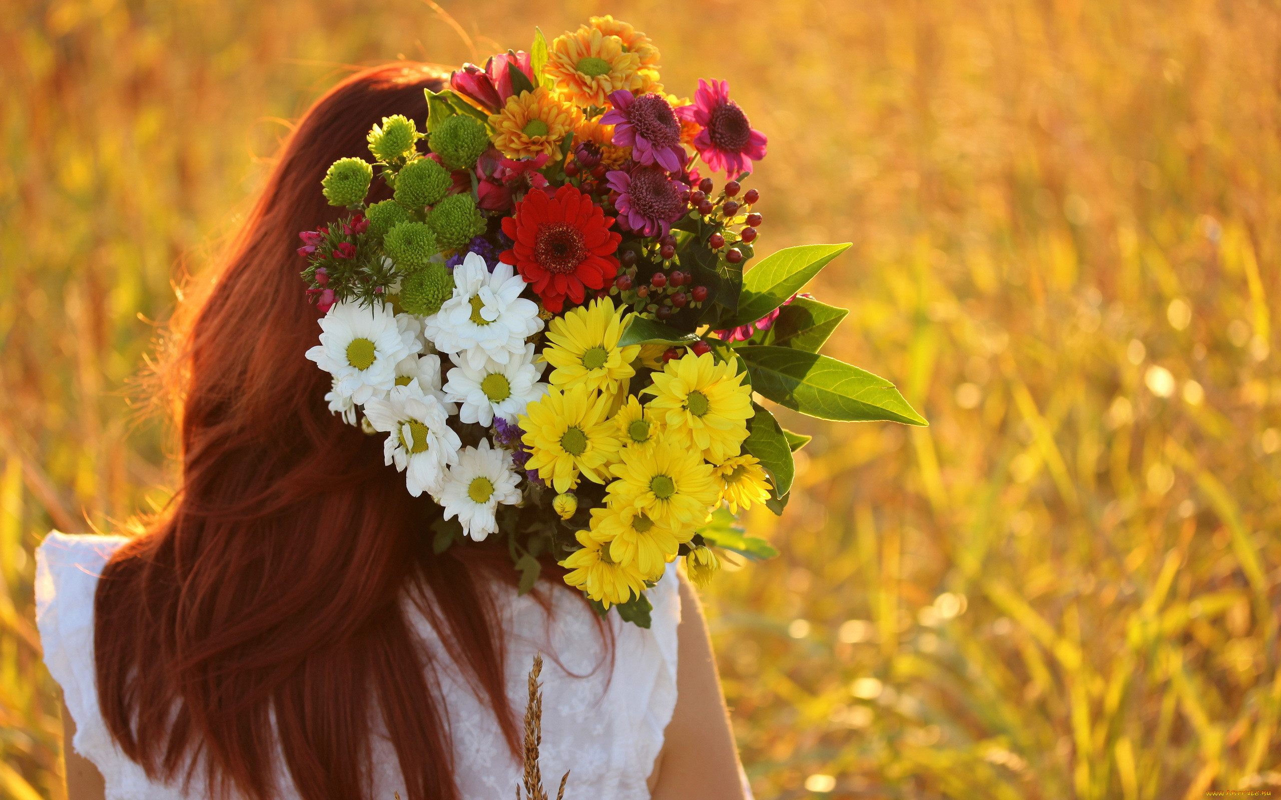 картинки для аватарки полевые цветы продолжат работать